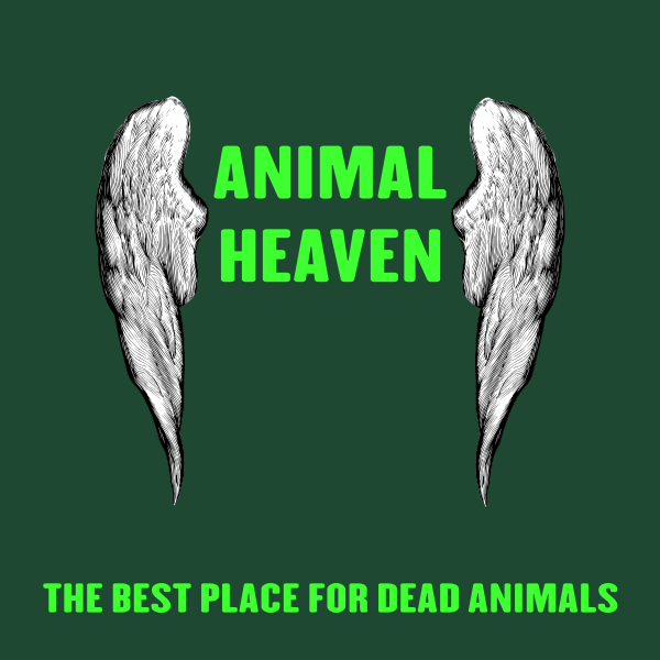 Animal heaven background vector image