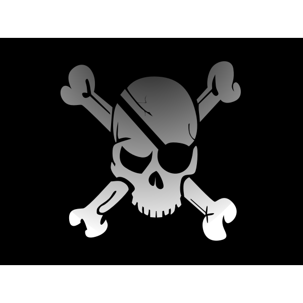 Pirates flag vector image
