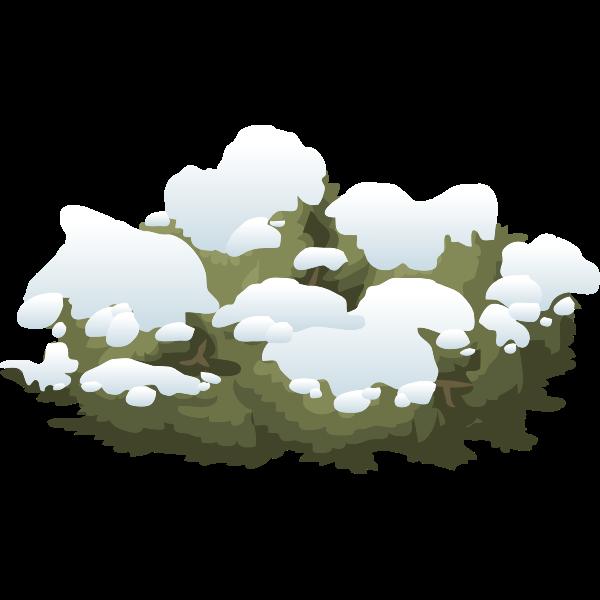 Snowy bush vector image