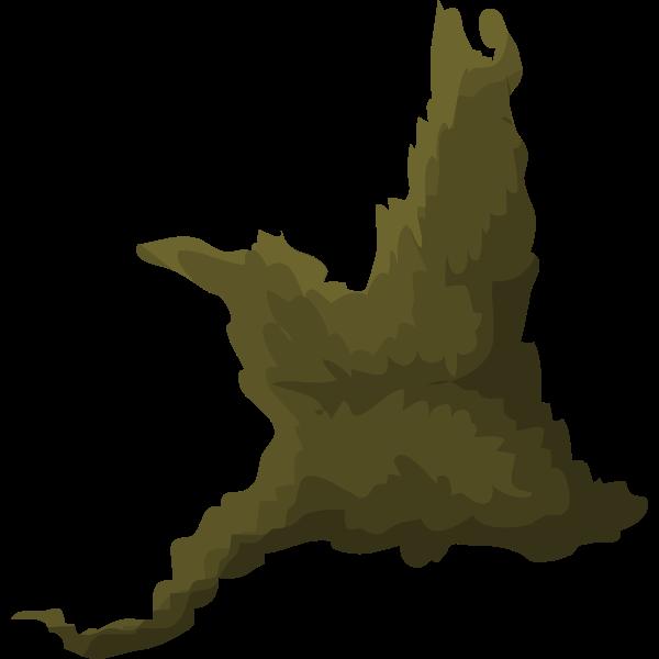 Piece of tree moss