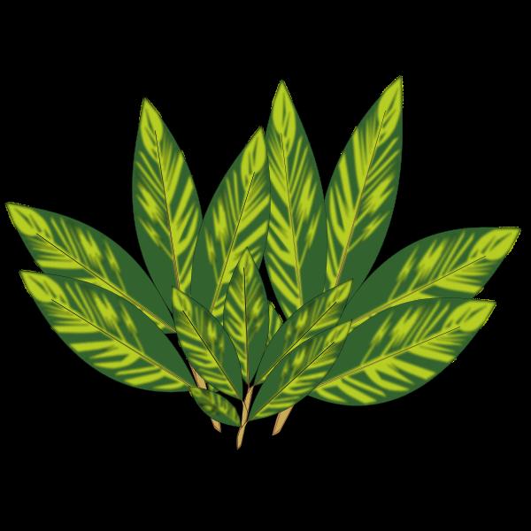 Sun-kissed leaves