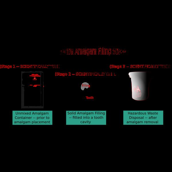 Dental Amalgam Filling Stages
