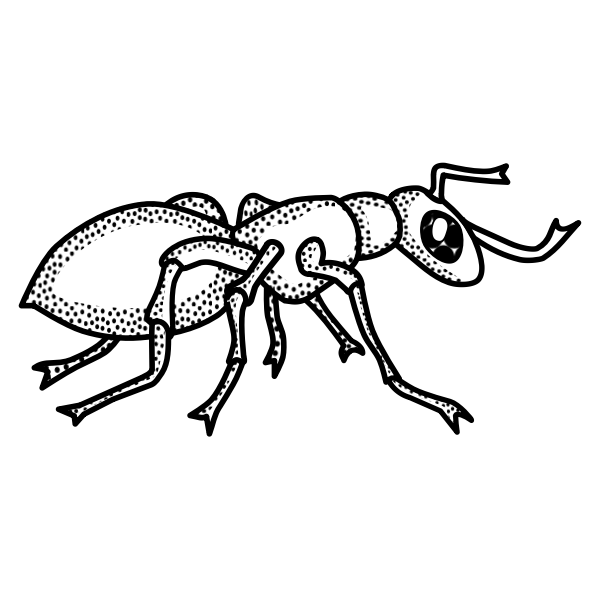 Vector drawing of black and white spotty ant