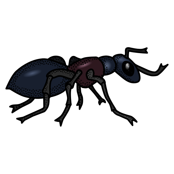 Colored ant line art vector graphics