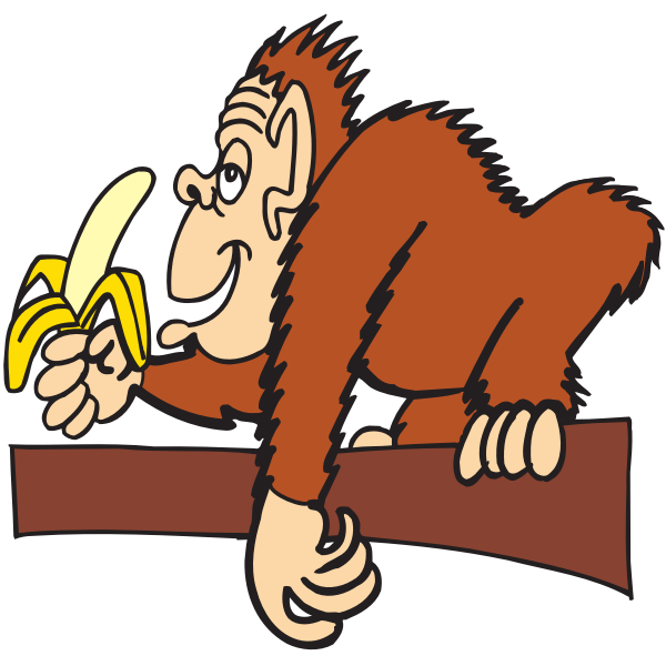 Ape eating banana