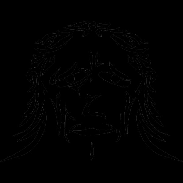 Apish face vector image