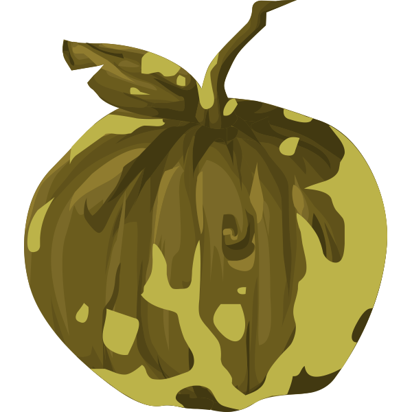 artifact wooden apple