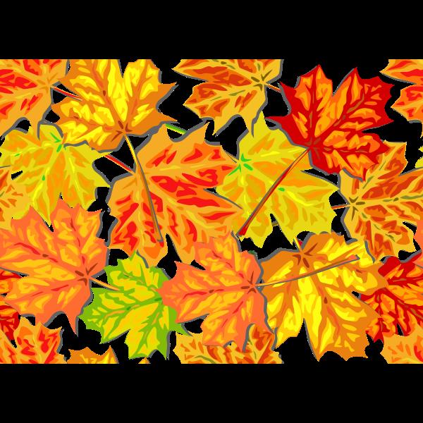 Autumn header vector image