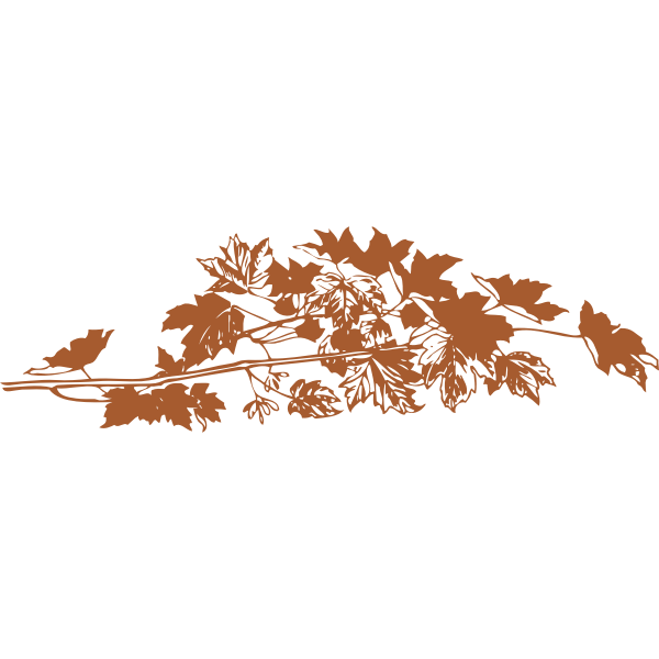 Vector illustration of brown autumn leaves