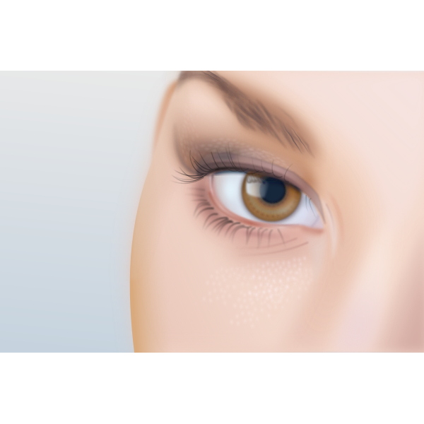 Vector drawing of woman's eye with extreme detail