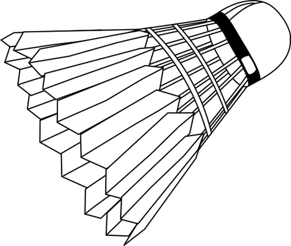 badminton shuttlecock full
