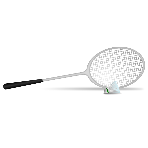 Vector illustration of badminton racket and ball