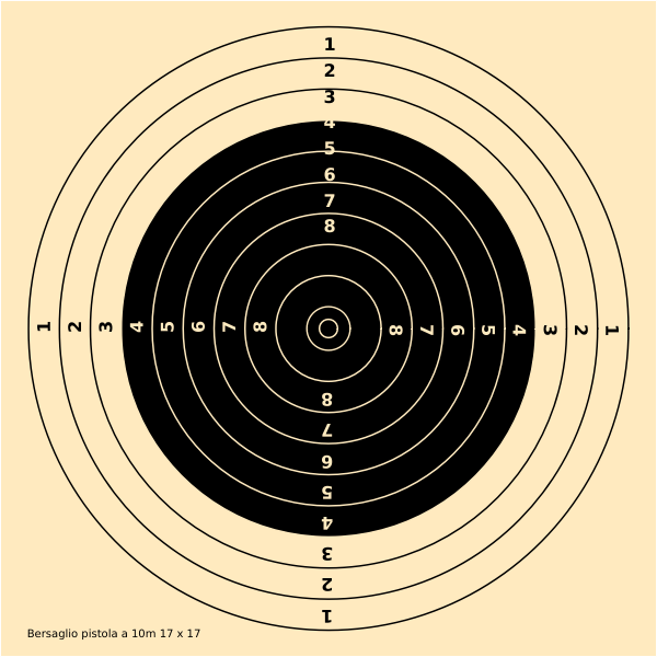 10m pistol shooting target vector image