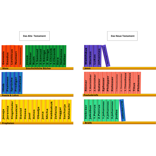 Books on shelves vector drawing