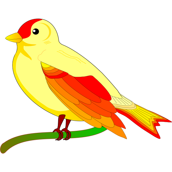 Vector image of colorful sparrow on  tree branch
