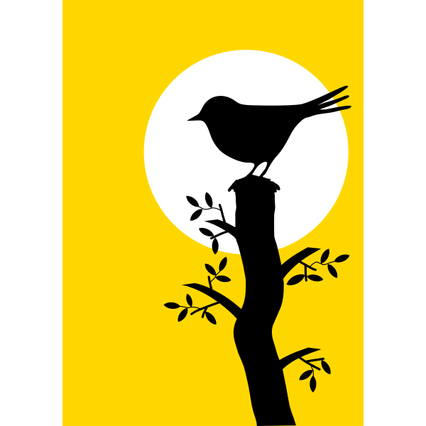 Silhouette image of bird under sunset