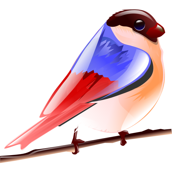 Vector image of colorful sparrow on a tree branch