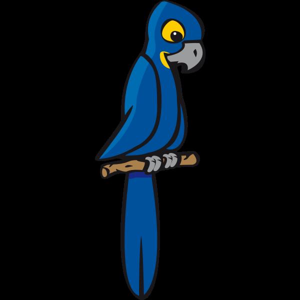 Blue macaw vector clip art