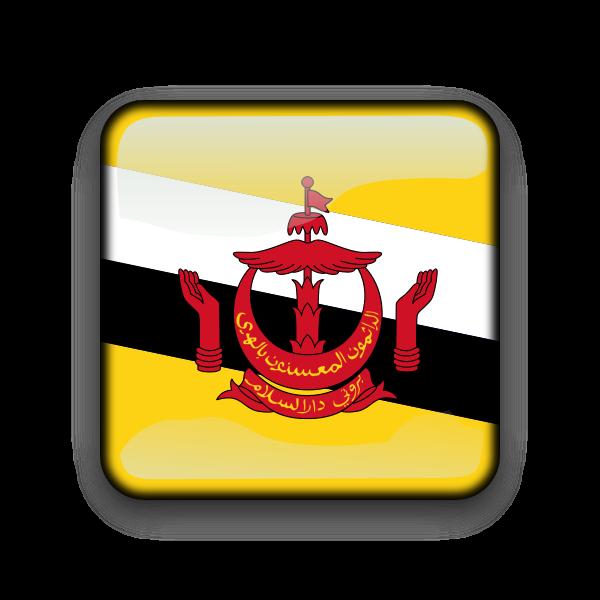 Brunei flag vector button