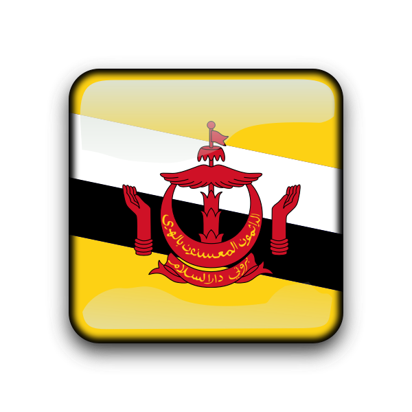 Brunei flag vector button