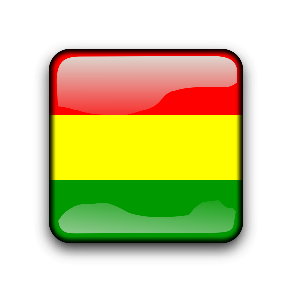 Bolivia glossy flag button