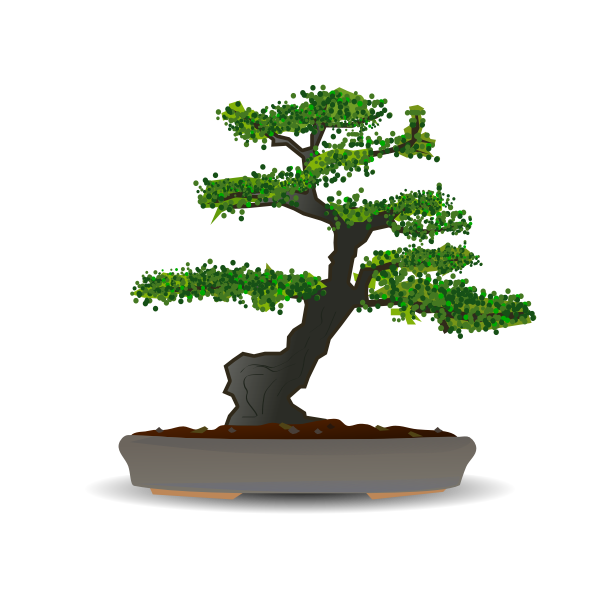 Bonsai tree vector drawing