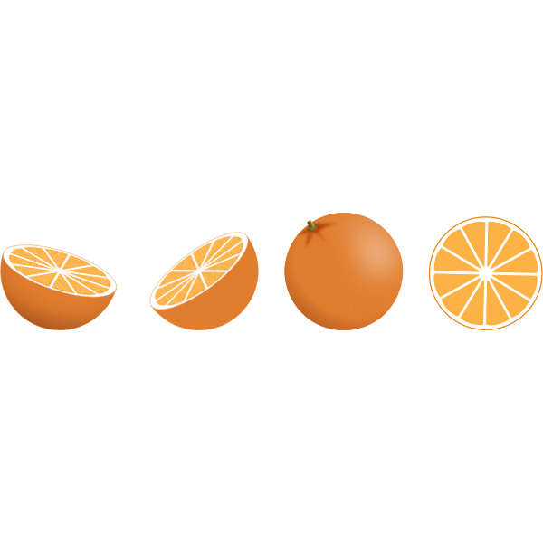 Vector image of selection of orange pieces