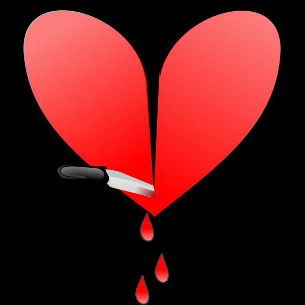 Broken glossy heart vector image