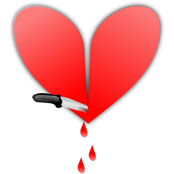 Heart sliced with a knife vector image