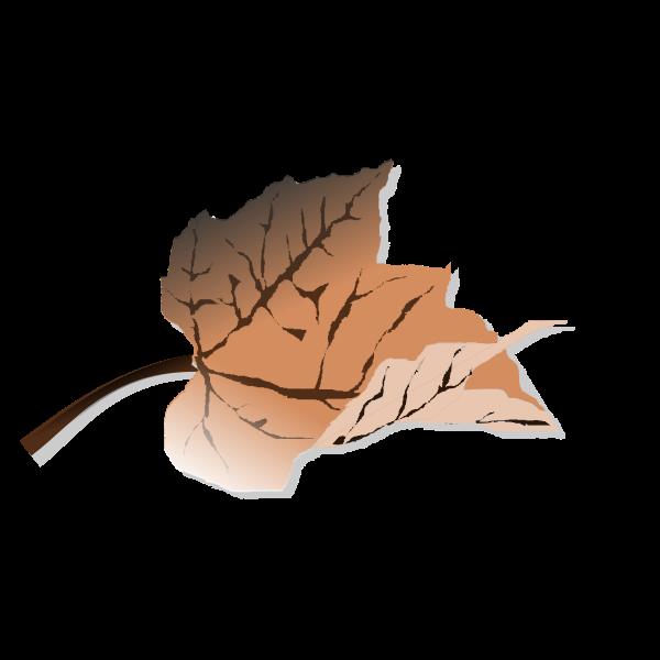 Brown autumn leaf vector clip art