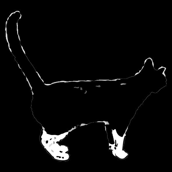 Black cat-1571731409