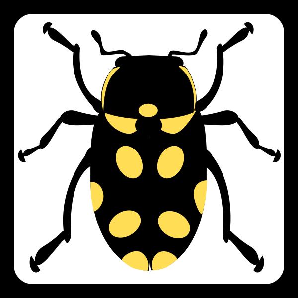Vector illustration bug sign icon