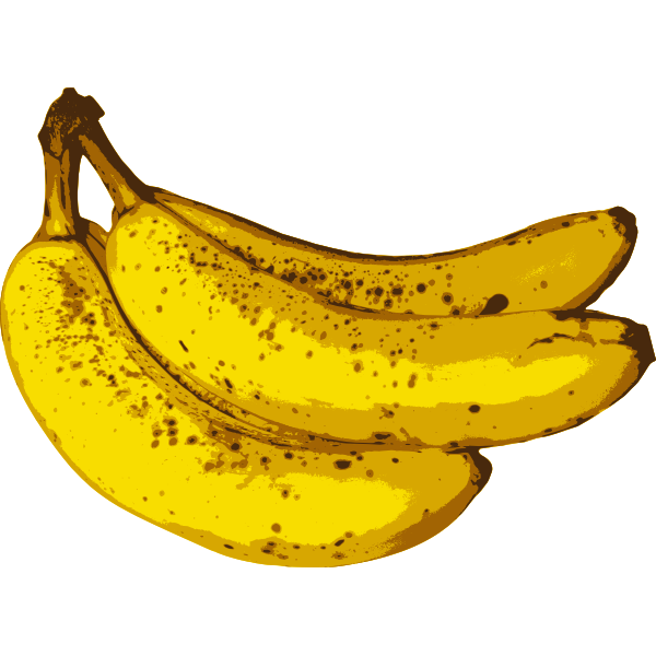 Bunch of bananas-1574071346