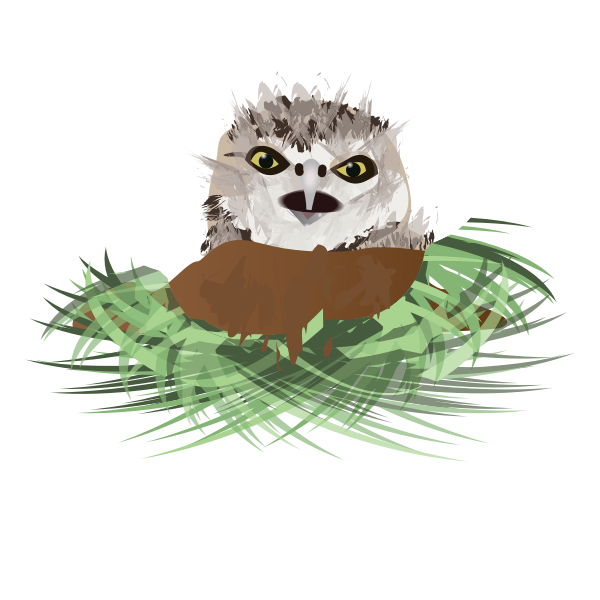 Vector drawing of burrowing owl in its den