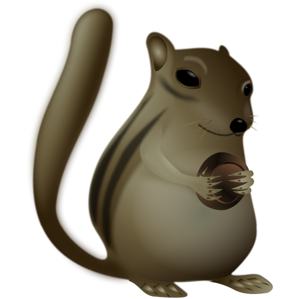 Chipmunk vector image