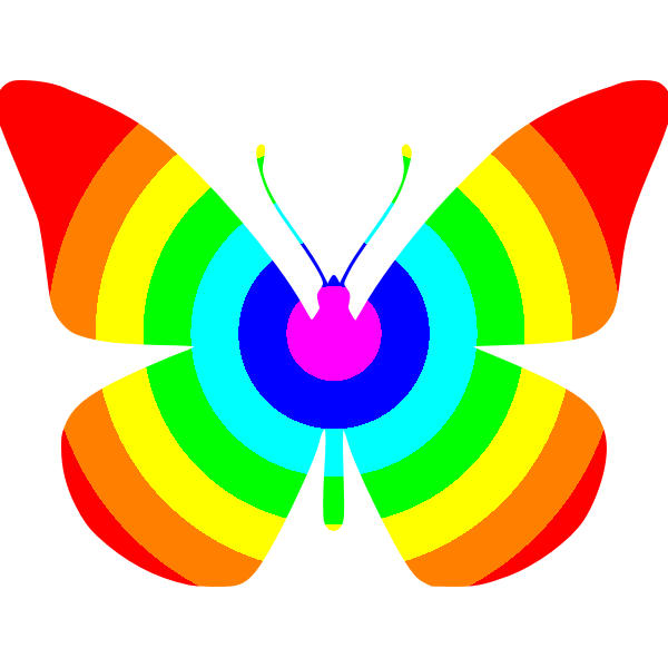 Butterfly rainbow colors