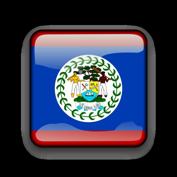 Belize vector flag button