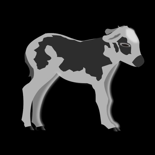 Calf grayscale vector graphics