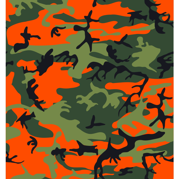 Hunter's camouflage print vector image