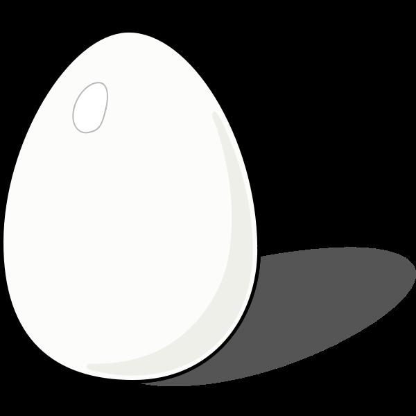 Vector illustration of a chicken egg