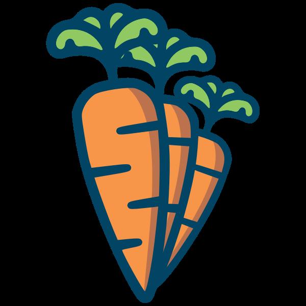 Three carrots drawing