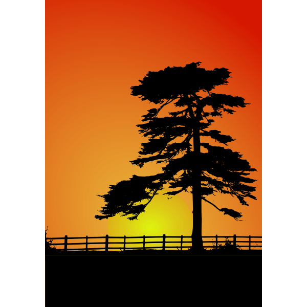 Cedar trees silhouette vector image