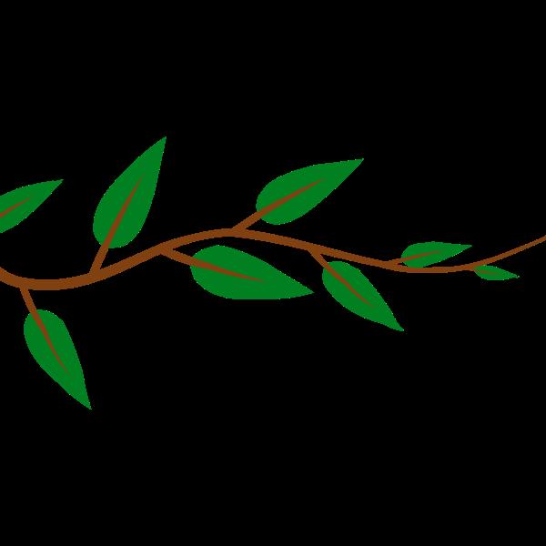 Alternate Leaf