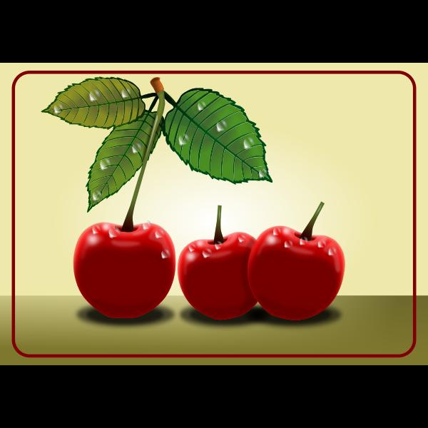 Sweet cherries vector clip art