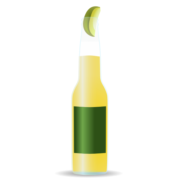 Light beer bottle vector image