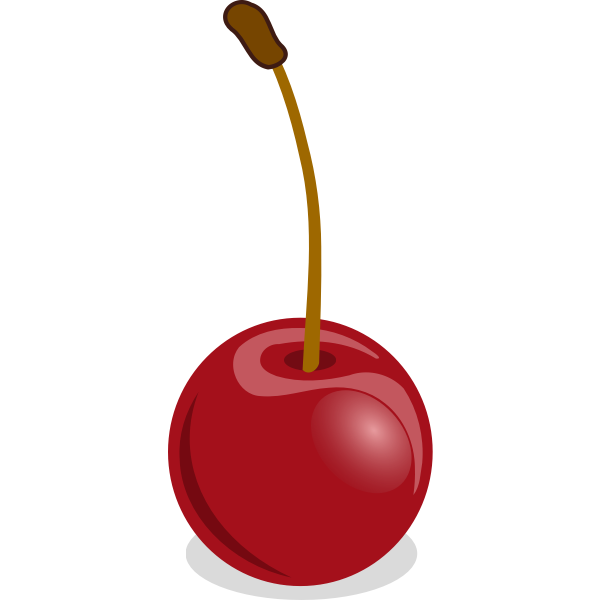 Cherries vector drawing