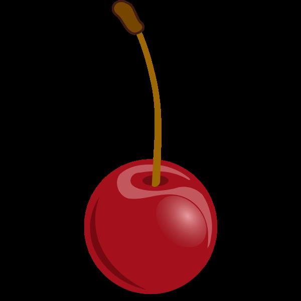 Cherries vector drawing