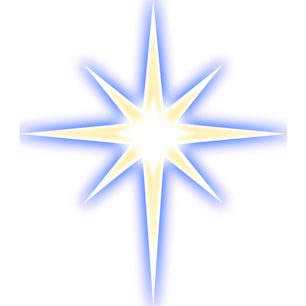 Christmas star vector image