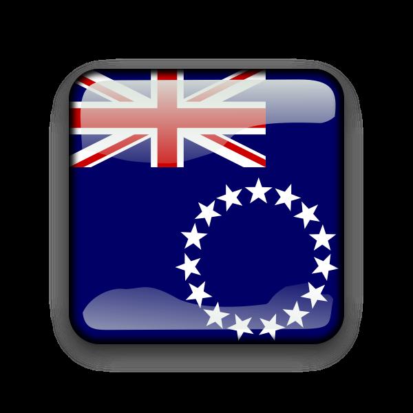 Cook Island flag vector