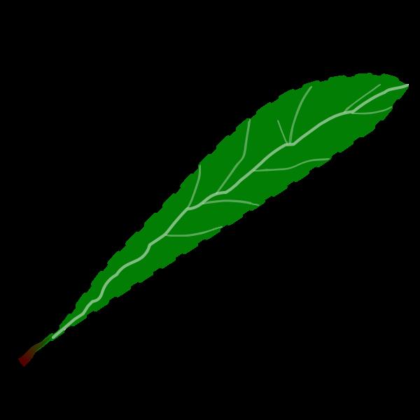 Green petal